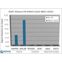 NBP1-71713